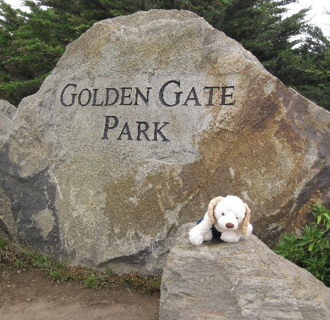 Yes, Golden Gate Park!!!