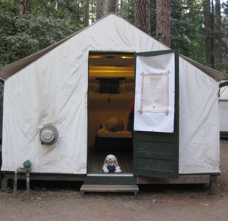 Yosemite in Tent Cabins